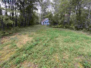 Photo 3: 4 SECOND Avenue: Rural Parkland County House for sale : MLS®# E4211897