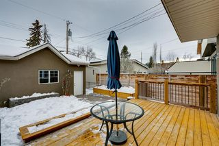 Photo 28: 732 34 Street NW in Calgary: Parkdale Semi Detached for sale : MLS®# A1056903