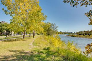Photo 36: 732 34 Street NW in Calgary: Parkdale Semi Detached for sale : MLS®# A1056903