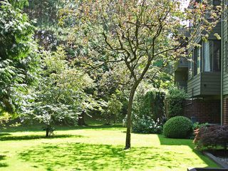 "Photo 8: 111 2298 MCBAIN Avenue in Vancouver: Quilchena Condo for sale in ""ARBUTUS VILLAGE"" (Vancouver West)  : MLS®# V900517"