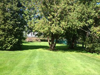 Photo 29: 311 E Concession 8 Road in Hamilton: Carlisle House (Bungalow) for sale : MLS®# X3153226
