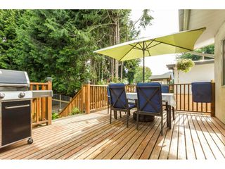 Photo 19: 33005 BRACKEN Avenue in Mission: Mission BC House for sale : MLS®# R2095719