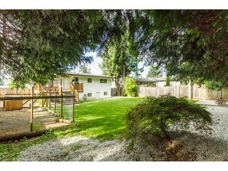 Photo 20: 33005 BRACKEN Avenue in Mission: Mission BC House for sale : MLS®# R2095719