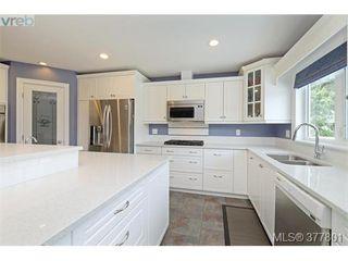 Photo 8: 4420 Torrington Rd in VICTORIA: SE Gordon Head Single Family Detached for sale (Saanich East)  : MLS®# 758594