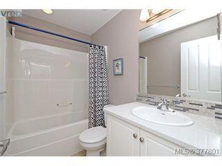 Photo 14: 4420 Torrington Rd in VICTORIA: SE Gordon Head Single Family Detached for sale (Saanich East)  : MLS®# 758594
