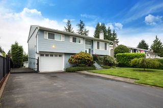 Photo 1: 22875 STOREY Avenue in Maple Ridge: East Central House for sale : MLS®# R2179109