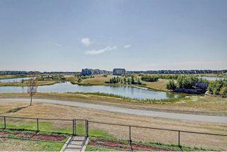 Photo 42: 123 MARQUIS GV SE in Calgary: Mahogany House for sale : MLS®# C4132955