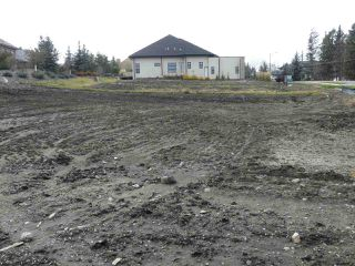 Photo 3: 255 WINDERMERE Drive in Edmonton: Zone 56 Vacant Lot for sale : MLS®# E4097100