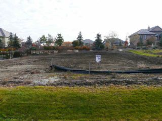 Photo 1: 255 WINDERMERE Drive in Edmonton: Zone 56 Vacant Lot for sale : MLS®# E4097100