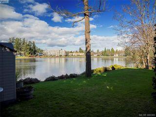 Photo 5: 916 Yarrow Pl in VICTORIA: Es Kinsmen Park House for sale (Esquimalt)  : MLS®# 780418