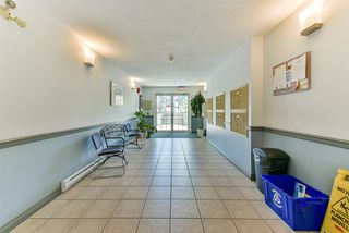 Photo 2: 106 3767 NORFOLK Street in Burnaby: Central BN Condo for sale (Burnaby North)  : MLS®# R2274204