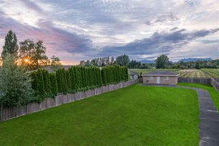 Photo 19: 13251 BLUNDELL Road in Richmond: East Richmond House for sale : MLS®# R2287615
