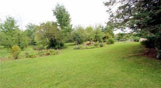 Photo 14: 36 Raven Lake Road in Kawartha Lakes: Rural Bexley House (Bungalow) for sale : MLS®# X4215934