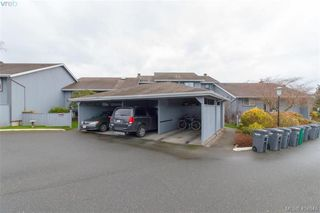Photo 21: 15 4391 Torquay Dr in VICTORIA: SE Gordon Head Row/Townhouse for sale (Saanich East)  : MLS®# 804063