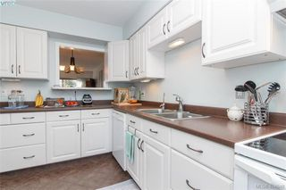 Photo 6: 15 4391 Torquay Dr in VICTORIA: SE Gordon Head Row/Townhouse for sale (Saanich East)  : MLS®# 804063