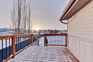 Photo 25: 2330 TAYLOR Close in Edmonton: Zone 14 House for sale : MLS®# E4143058