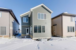 Photo 29: 6329 CRAWFORD Link in Edmonton: Zone 55 House for sale : MLS®# E4145788