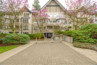 "Photo 1: PH1 7383 GRIFFITHS Drive in Burnaby: Highgate Condo for sale in ""EIGHTEEN TREES"" (Burnaby South)  : MLS®# R2356524"