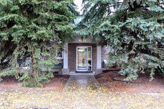 Photo 21: 18 9926 80 Avenue in Edmonton: Zone 17 Condo for sale : MLS®# E4152878
