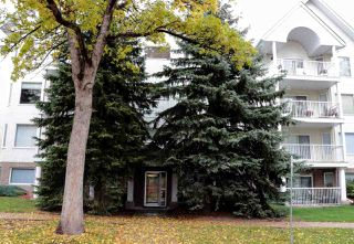 Photo 22: 18 9926 80 Avenue in Edmonton: Zone 17 Condo for sale : MLS®# E4152878
