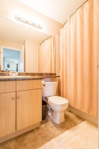 Photo 14: 227 16303 95 Street in Edmonton: Zone 28 Condo for sale : MLS®# E4158277