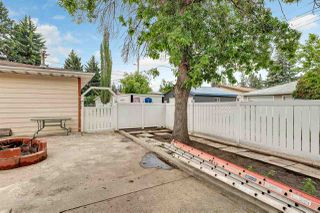 Photo 27: 8537 73 Avenue in Edmonton: Zone 17 House for sale : MLS®# E4163743