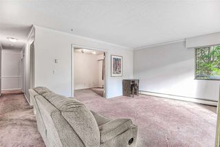 """Photo 7: 206 1544 FIR Street: White Rock Condo for sale in """"JUNIPER ARMS"""" (South Surrey White Rock)  : MLS®# R2414463"""