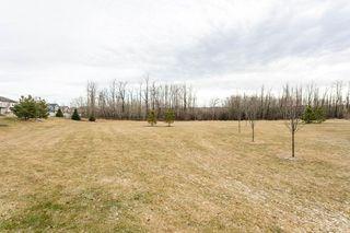 Photo 29: 5818 1A Avenue in Edmonton: Zone 53 House Half Duplex for sale : MLS®# E4195933