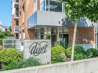 Photo 26: 404 646 Michigan St in : Vi Downtown Condo for sale (Victoria)  : MLS®# 851902