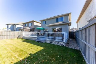 Photo 30: 4620 201 Street NW in Edmonton: Zone 58 House for sale : MLS®# E4216770