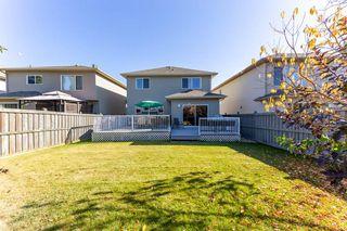 Photo 29: 4620 201 Street NW in Edmonton: Zone 58 House for sale : MLS®# E4216770