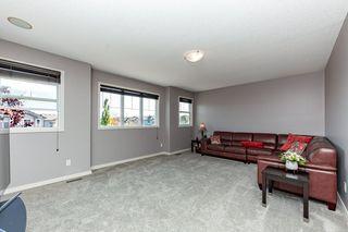 Photo 15: 4620 201 Street NW in Edmonton: Zone 58 House for sale : MLS®# E4216770