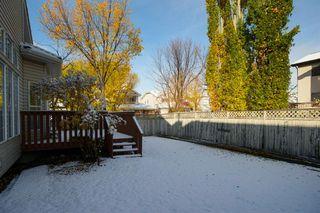Photo 48: 76 Douglas Glen Heights SE in Calgary: Douglasdale/Glen Detached for sale : MLS®# A1042549