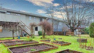 Photo 26: 554 S Birch St in : CR Campbell River Central House for sale (Campbell River)  : MLS®# 862293