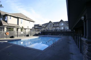 Photo 43: 132 2729 158TH Street in Surrey: Grandview Surrey Townhouse for sale (South Surrey White Rock)  : MLS®# F1126543