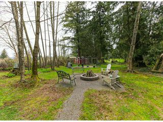 Photo 20: 30281 MERRYFIELD Avenue in Abbotsford: Bradner House for sale : MLS®# F1408278