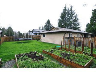 Photo 20: 22912 FULLER Avenue in Maple Ridge: East Central House for sale : MLS®# V1113038