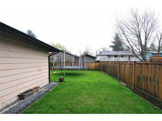 Photo 18: 22912 FULLER Avenue in Maple Ridge: East Central House for sale : MLS®# V1113038