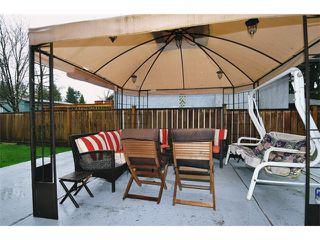 Photo 16: 22912 FULLER Avenue in Maple Ridge: East Central House for sale : MLS®# V1113038
