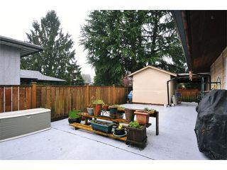 Photo 17: 22912 FULLER Avenue in Maple Ridge: East Central House for sale : MLS®# V1113038