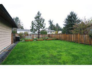 Photo 19: 22912 FULLER Avenue in Maple Ridge: East Central House for sale : MLS®# V1113038