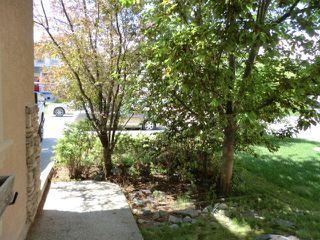 Photo 25: 52 BOW RIDGE Drive: Cochrane House for sale : MLS®# C4066881
