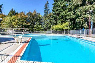 Photo 16: 8142 WEDGEWOOD Street in Burnaby: Burnaby Lake House 1/2 Duplex for sale (Burnaby South)  : MLS®# R2108883