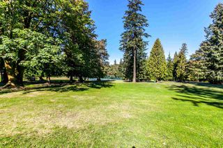 Photo 3: 8142 WEDGEWOOD Street in Burnaby: Burnaby Lake House 1/2 Duplex for sale (Burnaby South)  : MLS®# R2108883