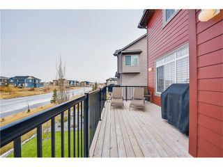 Photo 24: 861 CANOE Green SW: Airdrie House for sale : MLS®# C4094183