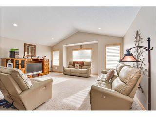 Photo 12: 861 CANOE Green SW: Airdrie House for sale : MLS®# C4094183