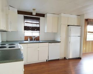 """Photo 4: 119 9950 WILSON Street in Mission: Stave Falls Manufactured Home for sale in """"RUSKIN PLACE MOBILE HOME PARK"""" : MLS®# R2167656"""