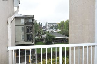 """Photo 13: 401 22351 ST ANNE Avenue in Maple Ridge: West Central Condo for sale in """"PORT HANEY"""" : MLS®# R2213208"""