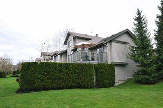 "Photo 20: 19 23281 KANAKA Way in Maple Ridge: Cottonwood MR Townhouse for sale in ""WOODRIDGE"" : MLS®# R2256449"
