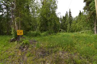 "Photo 5: 5 3000 DAHLIE Road in Smithers: Smithers - Rural Land for sale in ""Mountain Gateway Estates"" (Smithers And Area (Zone 54))  : MLS®# R2280288"